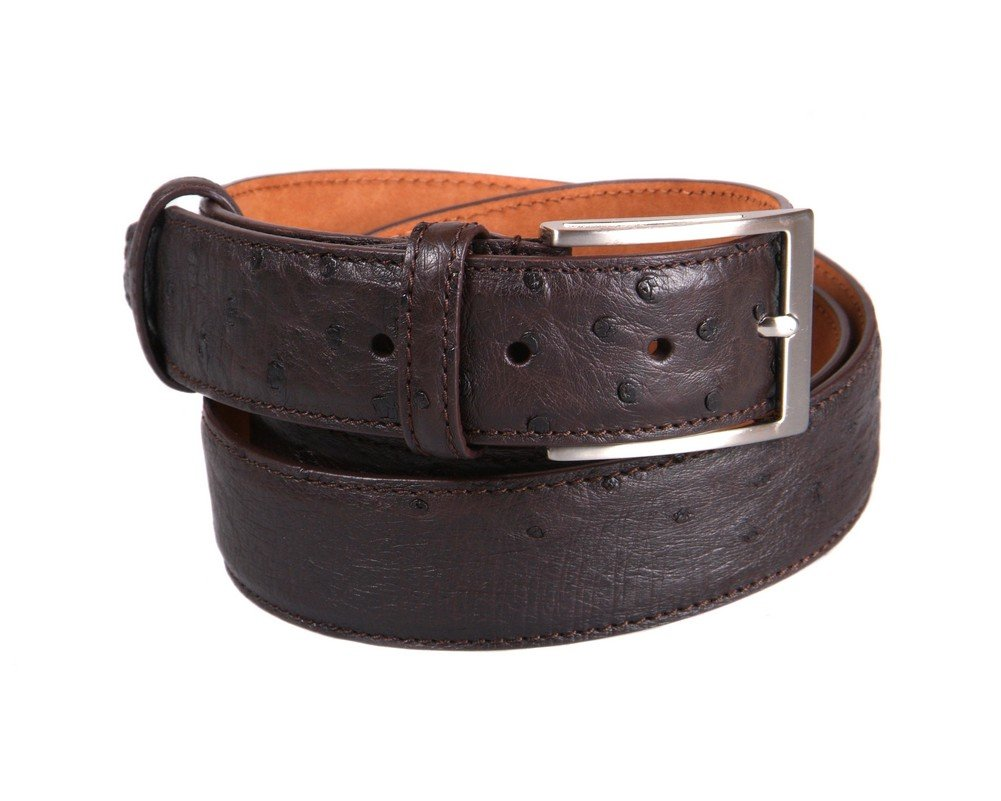 SAGEBROWN Brown Genuine Ostrich Belt