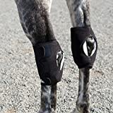 Ice Horse Hock Wrap-Single