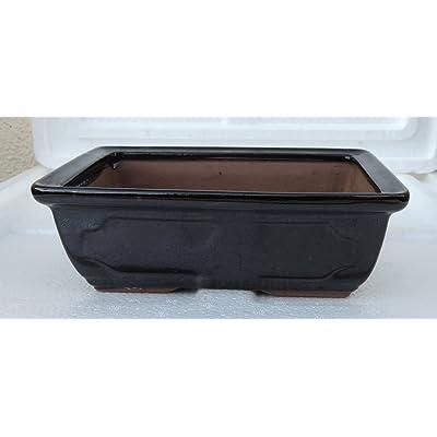 Ceramic Bonsai Pots - Japanese Jmbamboo Brand - Black Ceramic Pot Is 6x4.5x2'' Inches: Everything Else