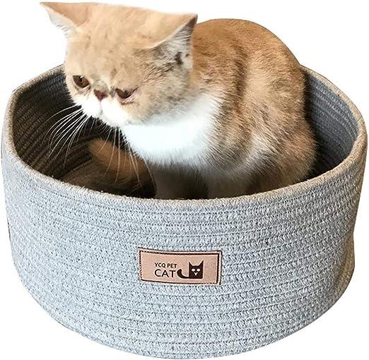 Comedero para gatos con tabla para rascar, para cuatro estaciones ...