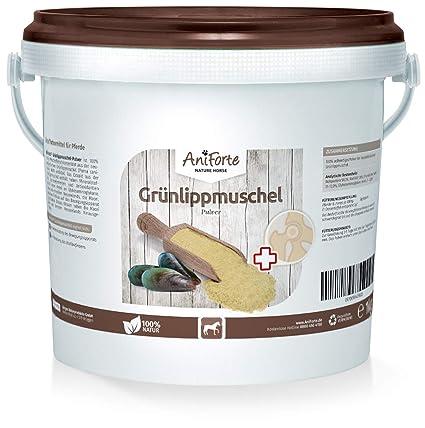 AniForte Verde lipp Conchas de Polvo 1 kg de Producto Natural para Caballos