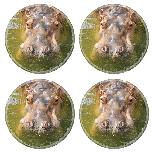 Luxlady Round Coasters IMAGE ID: 34363438 close up hippopotamus in water - Safari Swivel Wheel Single