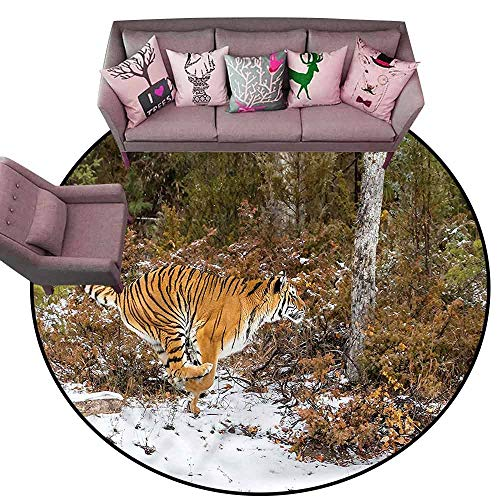 Baby Crawling Area Mats Safari,Bengal Tiger Wild Animal Diameter 72