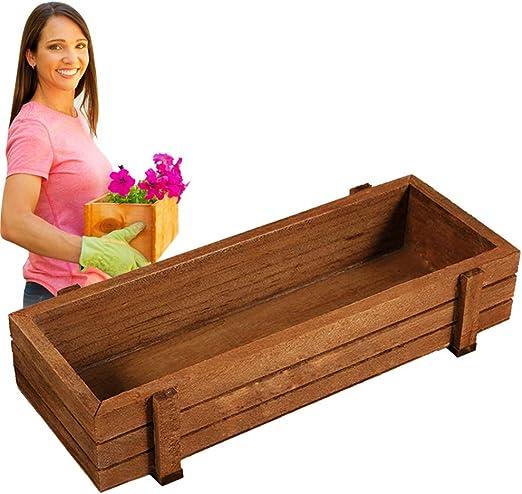 Caja de madera de semillas de plantas, 3 unidades para interiores ...