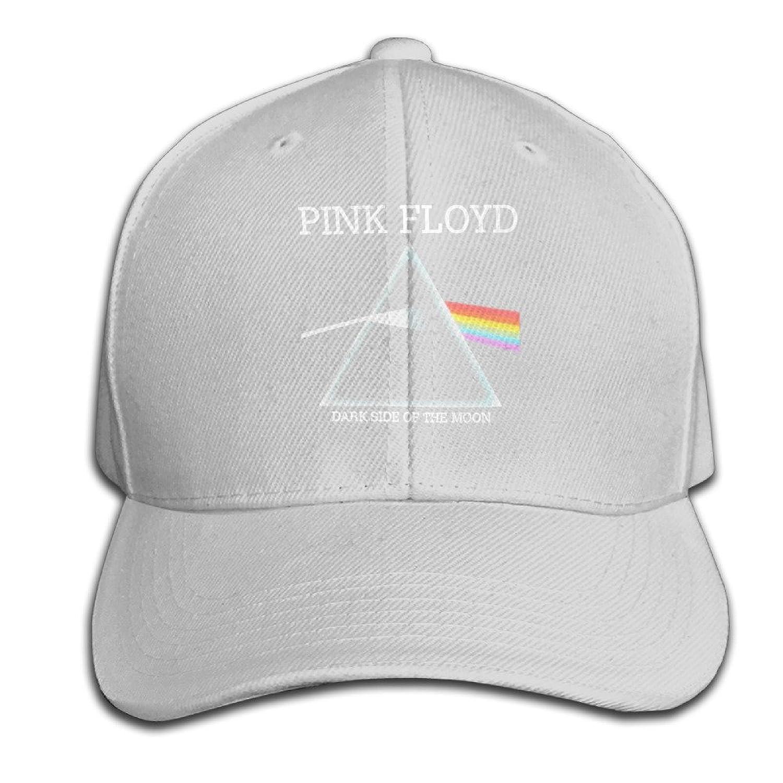 guns hats pink floyd dark side of the moon ash sandwich snapback