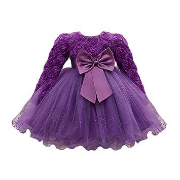 c9c26cb87 Amazon.com  Feitong Flower Baby Girl Long Sleeved Tutu Princess ...