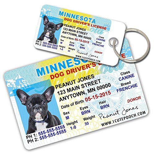 License Pet Tag - Minnesota Driver License Custom Dog Tags for Pets (2) and Wallet Card - Personalized Pet ID Tags - Dog Tags For Dogs - Dog ID Tag - Personalized Dog ID Tags - Cat ID Tags - Pet ID Tags For Cats
