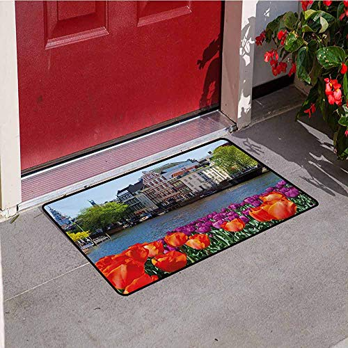 Jinguizi Landscape Inlet Outdoor Door mat European City Holland Amsterdam Scenery of Old Victorian Era Houses Art Print Catch dust Snow and mud W31.5 x L47.2 Inch Multicolor