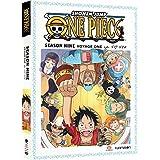 One Piece: Season Nine, Voyage One