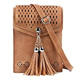 RARITY-US Women Small Tassel Crossbody Shoulder Bag Phone Pouch Purse Vintage Wallet Bags with Hollow-out Floral