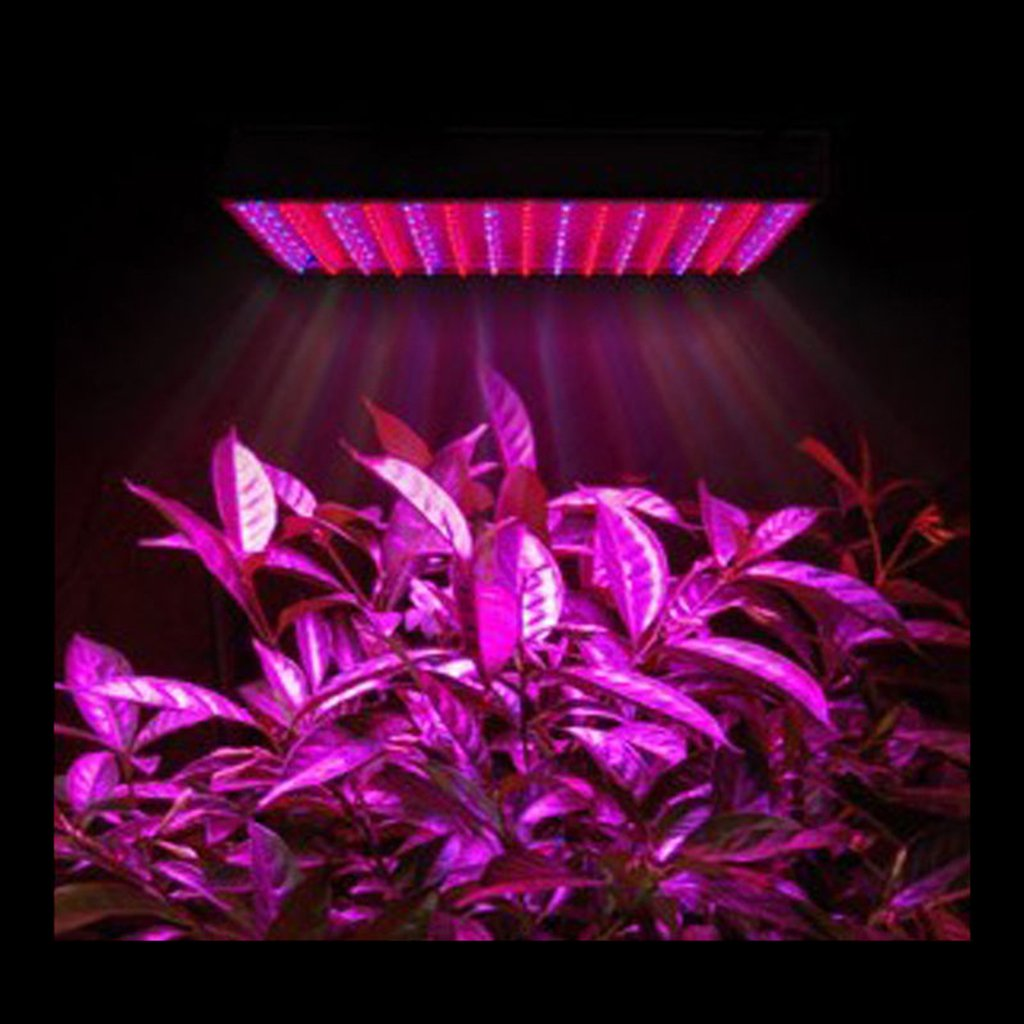 Amazon excelvan led grow light 45w 225 light 165red60blue i amazon excelvan led grow light 45w 225 light 165red60blue i generation indoor plant grow light with hanging kit us for plant flower vegetable parisarafo Gallery