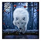 Jollylife Art - 5D DIY Full Round Diamond Painting White Wolf Embroidery Cross-stitch Rhinestone Mosaic Painting Home Decor Picture Gift with Tools, Diamond Storage Box (30x30cm)
