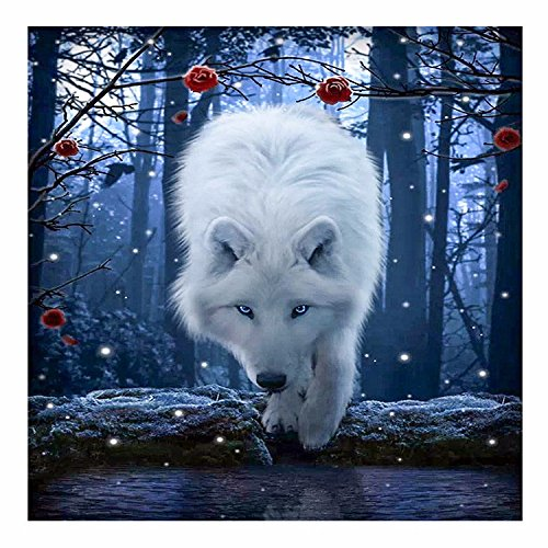 Jollylife Art - 5D DIY Full Round Diamond Painting White Wolf Embroidery Cross-stitch Rhinestone Mosaic Painting Home Decor Picture Gift with Tools, Diamond Storage Box (30x30cm) by jollylife