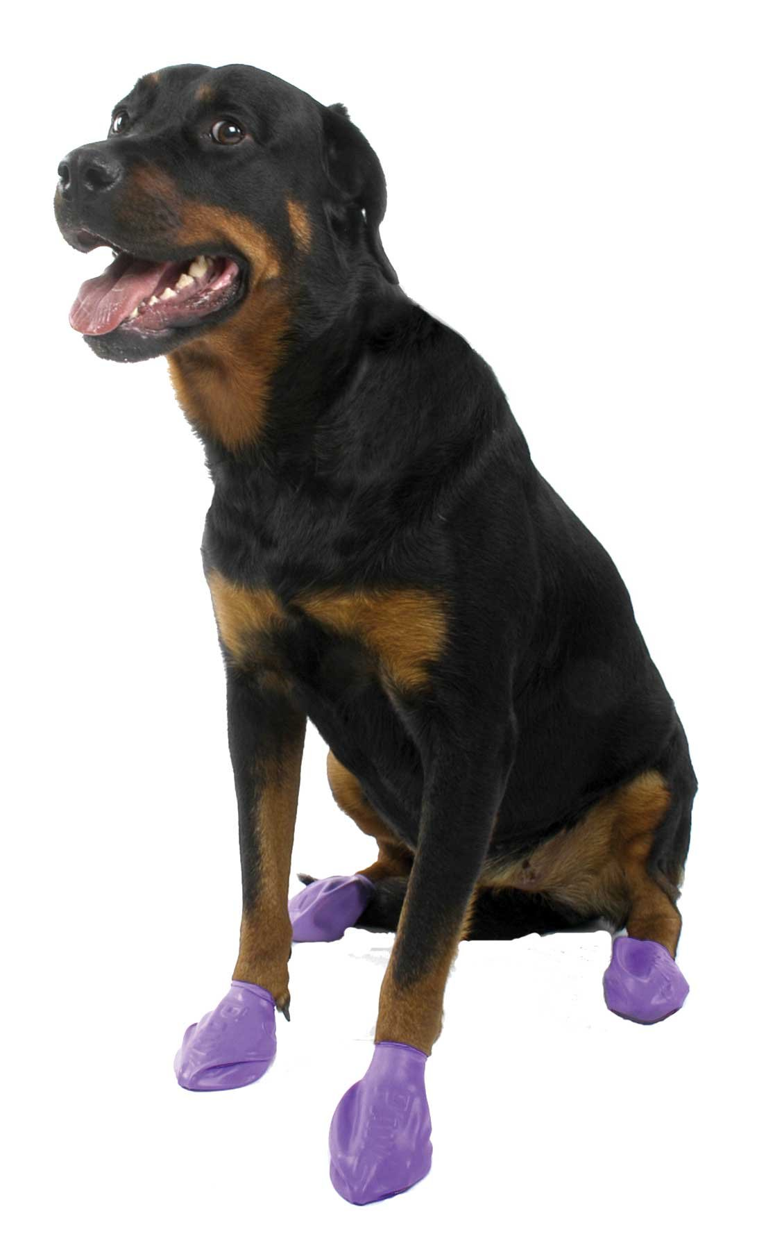 Pawz Purple Water-Proof Dog Boots, Large, Paws 3'' to 4''(12 Disposable-reusable Boots)