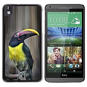 YOYOYO Smartphone Protección Defender Duro Negro Funda Imagen Diseño Carcasa Tapa Case Skin Cover Para HTC DESIRE 816 - especies de aves ornitología amarilla tucan