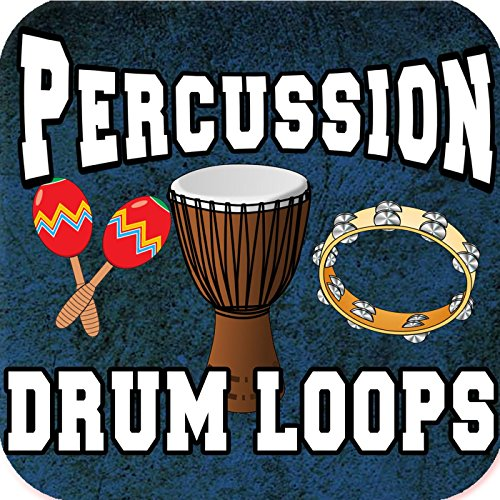 Shaker and Djembe Percussion Loop ()