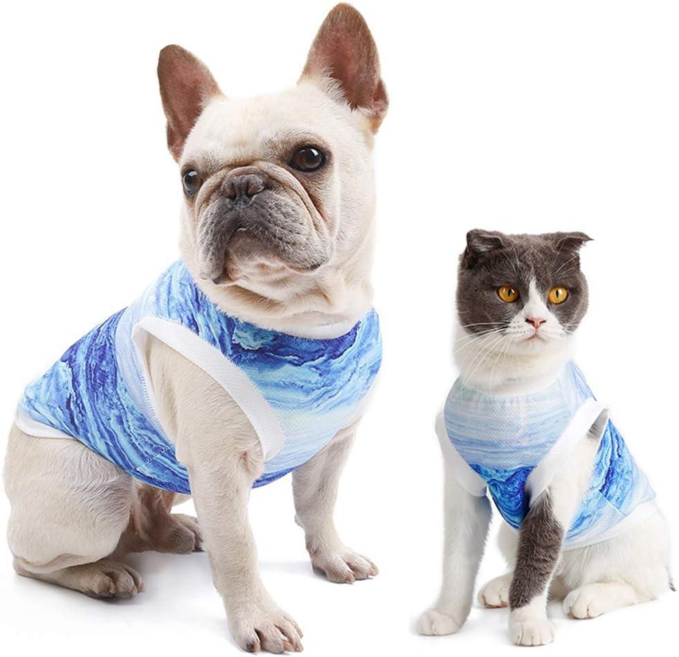 CT COUTUDI Pet Cold Vest Summer Breathable Vest for Dog Cat Cold Heatstroke Cooling Clothes Dog Summer Shirt