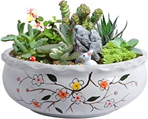 10 Inch Succulent Planter Large Garden Pot Hand-Painted Flower Pot Indoor with Drainage Hole