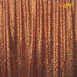 LQIAO 20FTx10FT Rose Gold Shimmer Sequin Fabric Backdrop Sequin Curtains Wedding Photo Booth Photography Backdrops for Party/Window/Home Decoration
