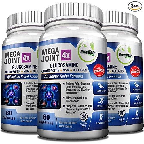 Top glucosamine chondroitin