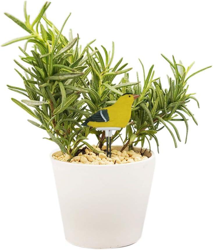 ShangSky Misuratore di umidit/à del Suolo di Uccelli in Resina Tester di umidit/à del Terreno Vegetale per Promemoria per Lirrigazione del Giardino di Bonsai Domestici