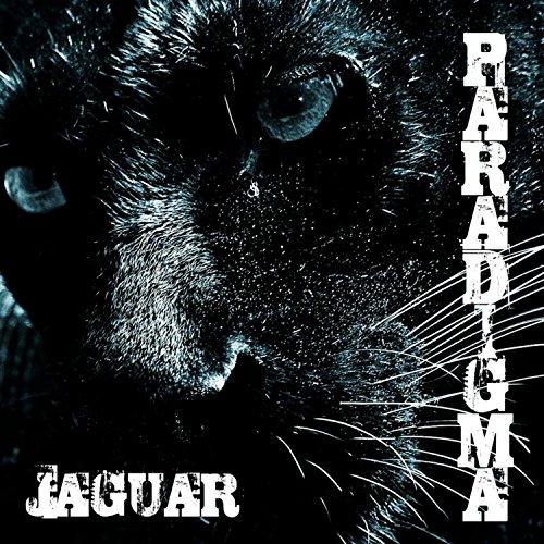 Kurt Cobain Jaguar - 4