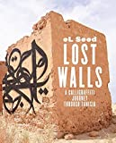 img - for Lost Walls: Graffiti Road Trip through Tunisia book / textbook / text book