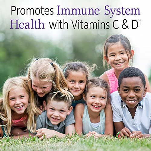 618y6Li%2B87L. AC - Garden Of Life Dr. Formulated Probiotics Organic Kids+ Plus Vitamin C & D - Berry Cherry - Gluten, Dairy & Soy Free Immune & Digestive Health Supplement, No Added Sugar, 30 Chewables (Shelf Stable)