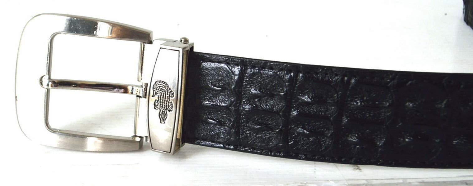 Authentic Sefaro Crocodile Skin Mens Double Rows Backbone Pin Belt