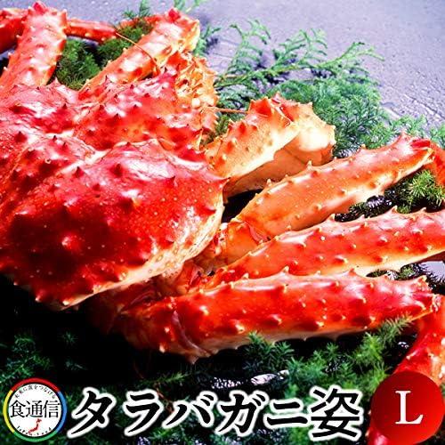 かに たらばがに ボイルたらばがに姿 1尾(1.5~1.8kg)L タラバガニ 本たらば 蟹姿