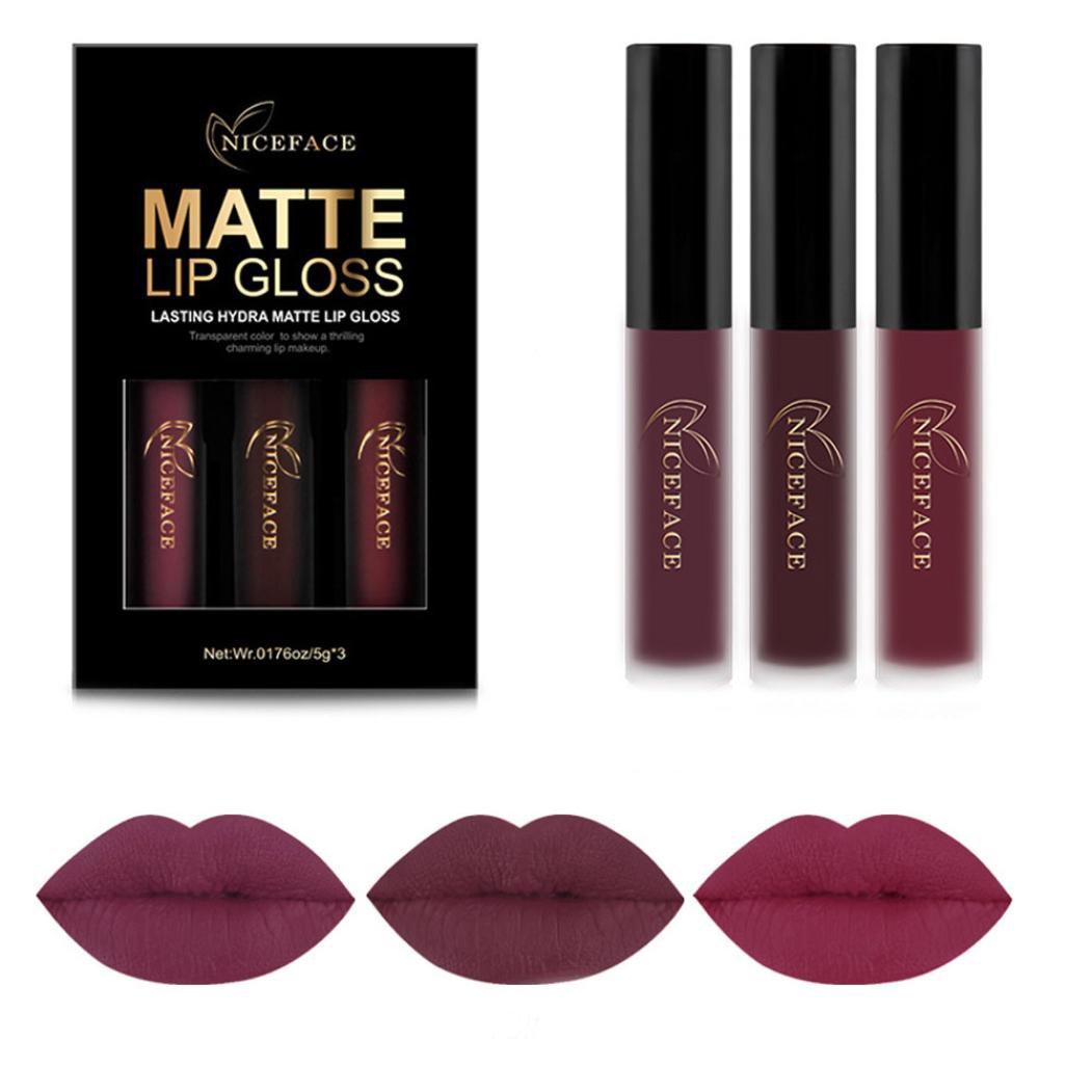 lápiz labial líquido, lápiz labial mate de maquillaje permanente Sannysis Kit de brillo de labios atractivo mate duradero cosméticos labial impermeable y Barra De Labios 3pcs (B)