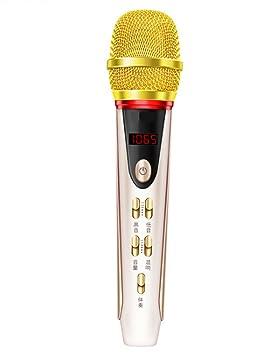 baliyin Karaoke micrófono, micrófono de vehículos con FM, Bluetooth inalámbrico portátil Karaoke micrófono de