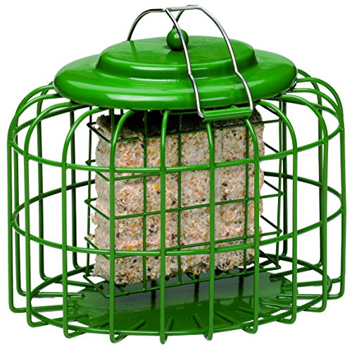 Cake Feeder (The Nuttery NT075 Oval Suet Cake)