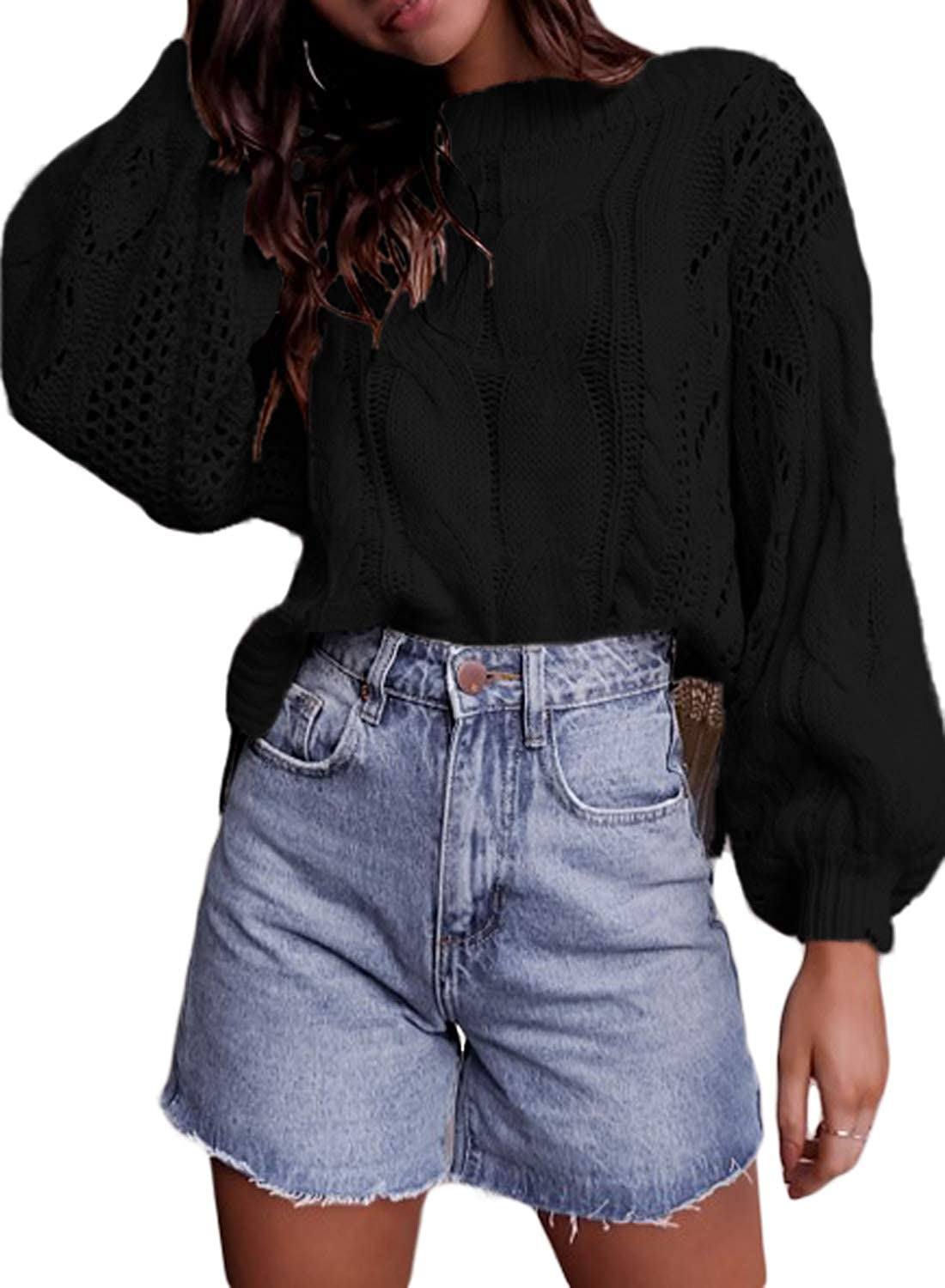 372a7df6073eec Loose style, Long Sleeve, Hollow out,Pullover Sweater for Women and Teens  Solid color,Crew neck,Lantern Sleeve,Ribbed cuffs and hem
