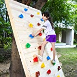 TOPNEW 25PCS Rock Climbing Holds for Kids, Large
