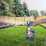 Cutter Backyard Bug Control 32 oz Ready-to-Spray
