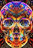 TianMai Hot New DIY 5D Diamond Painting Kits Full Drill Diamond Embroidery Painting Pasted Paint By Number Kit Stitch Craft Kit Home Decor Wall Sticker - Colored Skull, 30x40cm
