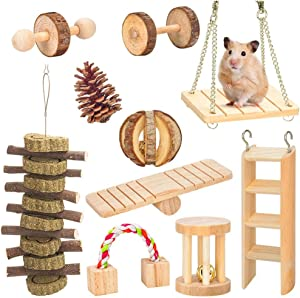 AsiFancy Hamster Chew Toys, Guinea Pig Rat Gerbil Chew Toys Accessories, Natural Wooden Watermelon Balls Bell Roller Teeth Care Molar Toy for Chinchilla Bird Bunny (1)