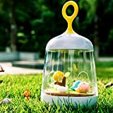 LuxLumi Woodland Birds Music Box with Brahms Lullaby & Color Changing Eye Care LED Lantern Lamp Night Light for Nursery Baby Kids Child Bedroom Baby Shower Gift