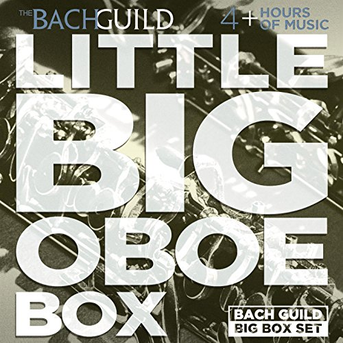 Little Big Oboe Box