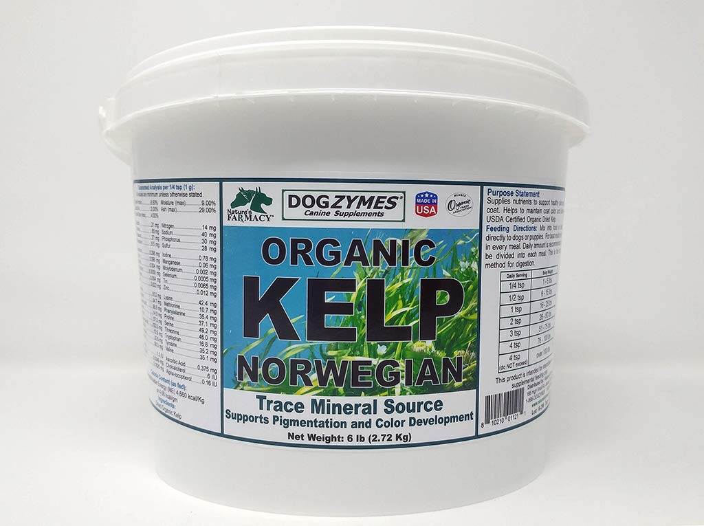 Dogzymes Certified Organic Norwegian Kelp Pet Supplement, 6-Pound by Dogzymes