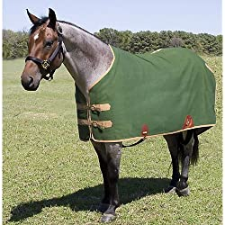 Mustang Canvas Turnout Blanket 76In Green