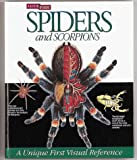 img - for A Look Inside Spiders and Scorpions (Look Inside (Heinemann)_) by Paul Hillyard (1995-12-02) book / textbook / text book
