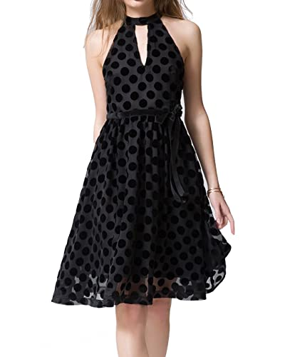 Talever Women's Halter Neck Sleeveless Lace A-Line Chiffon Swing Cocktail Party Dress