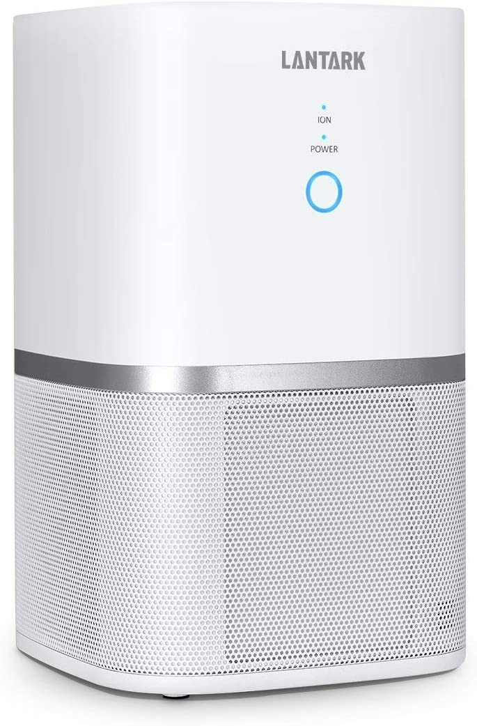Air Purifiers For Home, 5 in 1 TRUE HEPA Filter Air Purifier For Allergies, Smoker, Eliminates Odors/Dust Mites/Mold Spores/Pollen/Germs/Pets Dander/PM2.5/2-Speed Quiet Desktop Ion Pure Air Cleaner