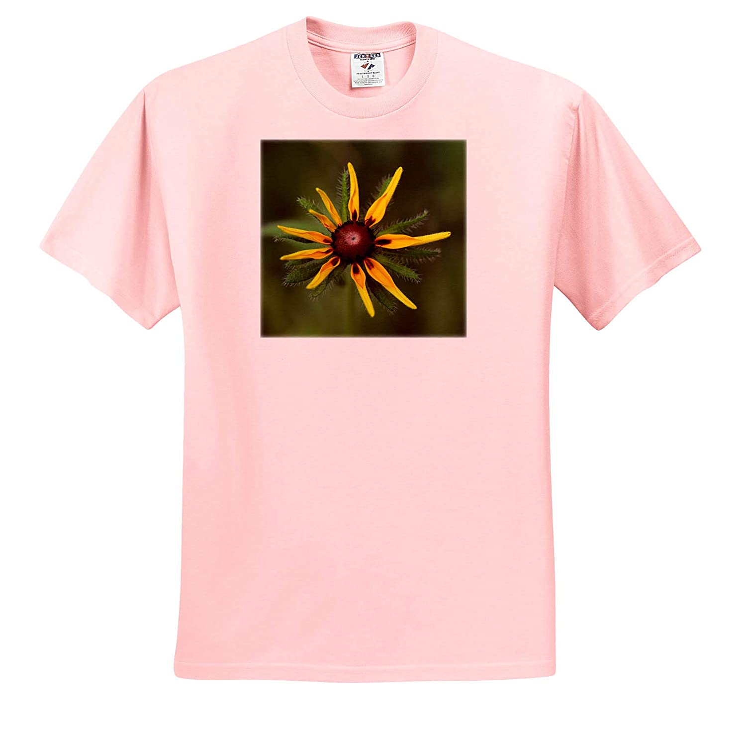 - Adult T-Shirt XL ts/_320122 3dRose Stamp City Flowers Macro Photograph of a Black Eyed Susan About to Open