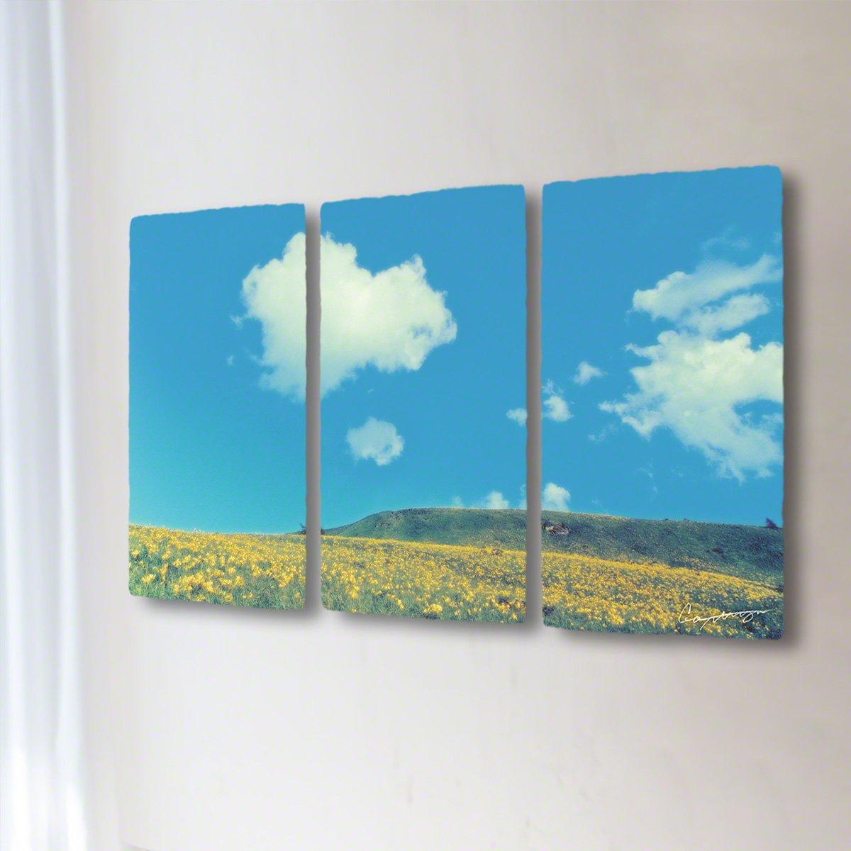 和紙 アートパネル 3枚 続き 「青い空と白い雲とニッコウキスゲの丘」 (128x72cm) 絵 絵画 壁掛け 壁飾り インテリア アート B07BFT2VZD 35.アートパネル3枚続き(長辺128cm) 168000円|青い空と白い雲とニッコウキスゲの丘 青い空と白い雲とニッコウキスゲの丘 35.アートパネル3枚続き(長辺128cm) 168000円