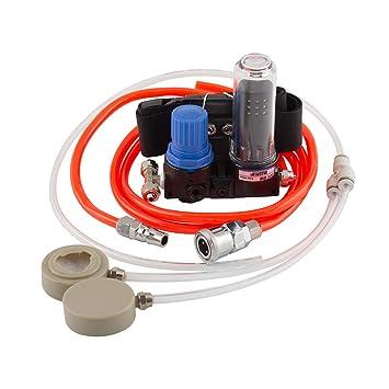 Sistema de respirador alimentado por aire para pintar mascarillas de gas: Amazon.es: Bricolaje y herramientas