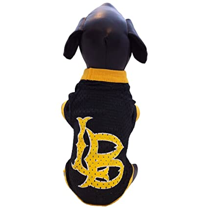 04fd5e568 Amazon.com   NCAA Long Beach State 49ers Athletic Mesh Dog Jersey ...