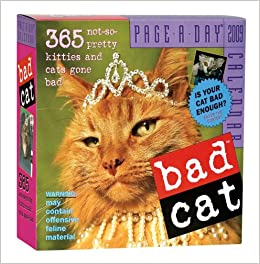 8bc66f6cfb6 Bad Cat (Original Page a Day Calendars) Calendar – Day to Day Calendar